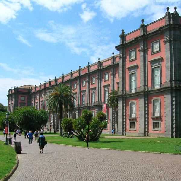 Visita guidata Museo Capodimonte e aperitivo Torre Palasciano